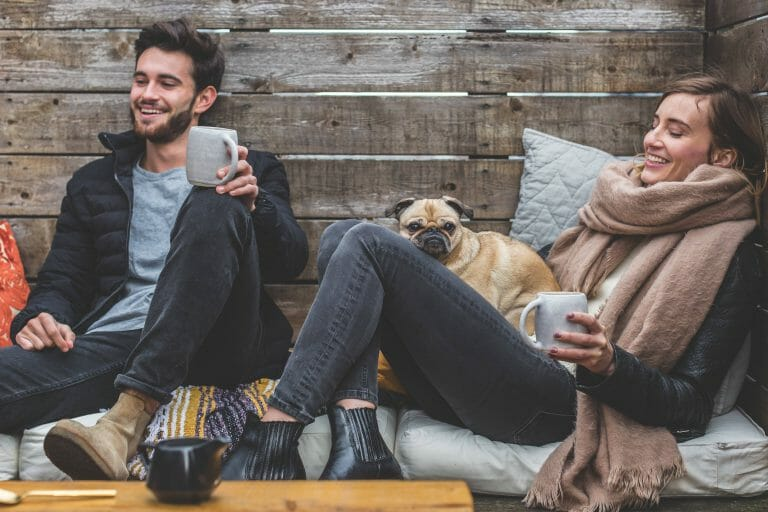 What are the Best Dog Breeds for Small Spaces?  [Our Top 5 Picks]